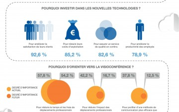 Web Conferencing in France (Infographic)