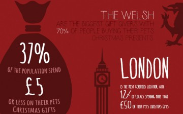 Pets at Christmas (Infographic)