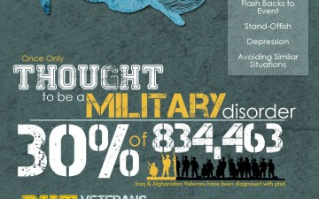 PTSD, A National Disorder (Infographic)