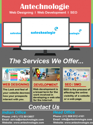 Web Design and Web application Company In US and India