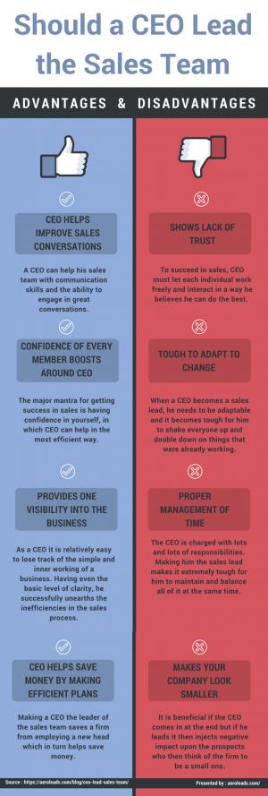 Should a CEO Lead Sales Team?