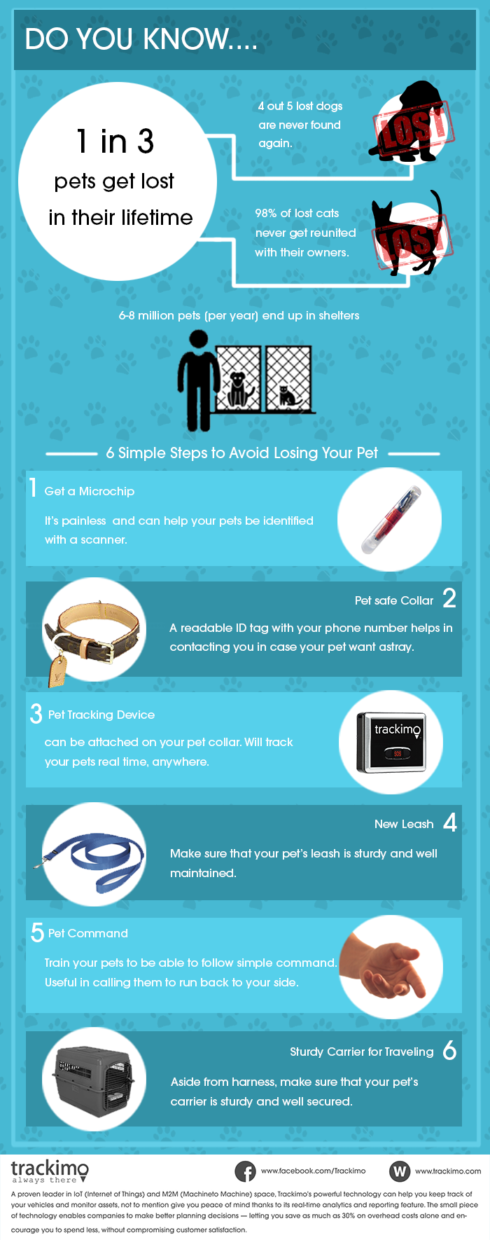 Tips to Avoid Losing Pet – Infographicas